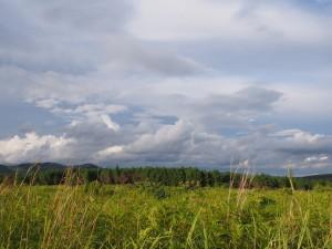 P3104478 - Wandelen bij Luwawa