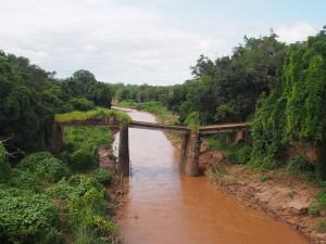 P3124543 - Oude brug in Nkhotakota NP