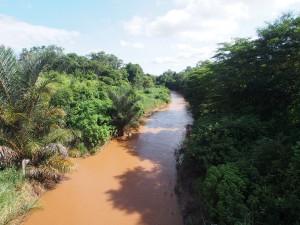 P3124552 - Kaombe rivier Nkhotakota NP