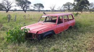 20170401 163241 - MIjn nieuwe auto bij Fringilla Farm