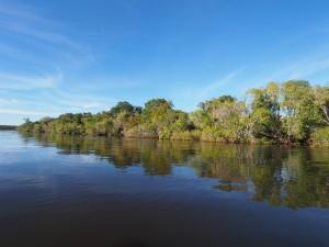 P4045914 - Boottocht Kafue rivier