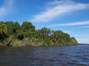 P4045989 - Boottocht Kafue rivier