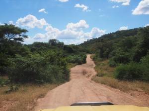 P4126170 - Onderweg naar Kariba meer