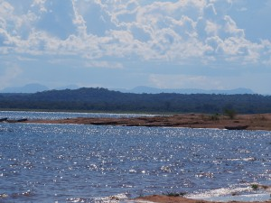 P4146199 - Kariba meer