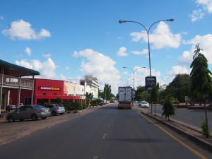 P4166256 - Livingstone