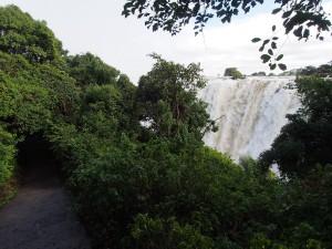 P4176290 - Victoria watervallen