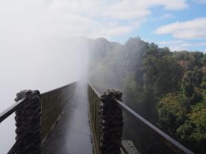 P4176321 - Knife Edge Bridge Victoria watervallen