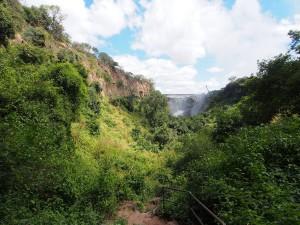 P4176478 - Afdalen naar Boiling Pot Victoria watervallen