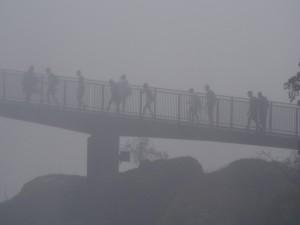 P4176542 - Kinfe Edge Bridge Victoria watervallen