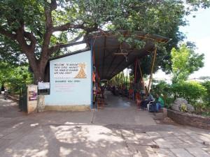 P4186638 - Mukini market Livingstone