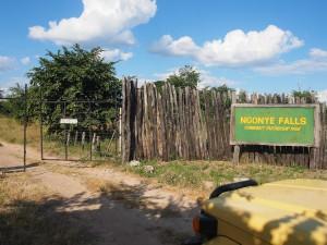 P4196674 - Ngonye waterval park
