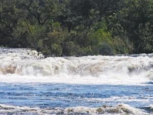 P4206787 - Ngonye waterval