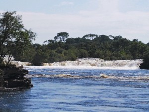 P4206790 - Ngonye waterval