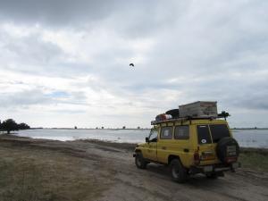IMG 4294 - Visarend vliegt over kanarie Chobe NP
