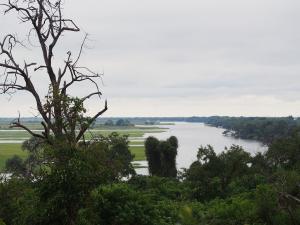 P4246905 - Chobe rivier Chobe NP