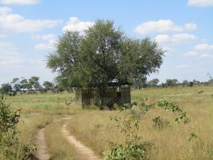 IMG 4374 - Gloednieuw observatieplatform Mudumu NP