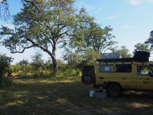 P4297513 - Kampje Mudumu NP