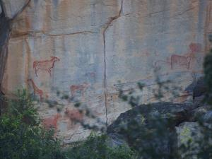 P5027691 - Rotstekeningen Tsodilo Hills