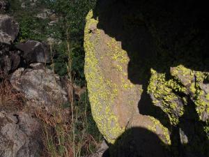 P5027733 - Mos Tsodilo Hills