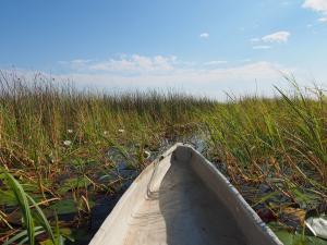 P5098088 - Mokorotochtje door Okavango delta