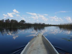 P5098202 - Mokorotochtje door Okavango delta