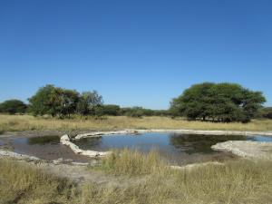 IMG 4465 - Waterhole Sunday Pan CKGR