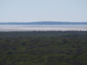 P5189148 - Uitzicht over Sua Pan, richting Kubu Island