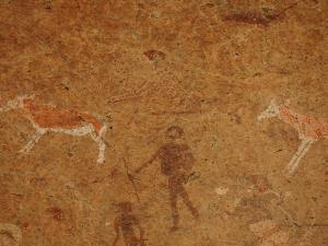 P6081140 - Skelet rotstekening Brandberg