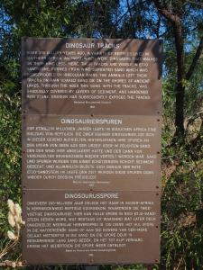 P6091239 - Dino sporen Kalkfeld
