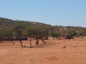 P6171959 - Himba dorpje onderweg door Kaokoveld