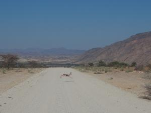 P6212111 - Onderweg naar Kamanjab