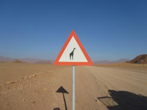 IMG 0523 - Overstekende giraffes onderweg naar Aus