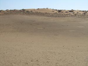 IMG 0491 - Grascirkels Sossusvlei