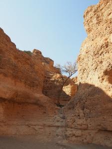 P6292887 - Sesriem Canyon