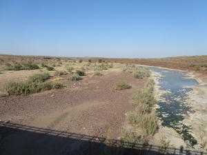 IMG 0898 - Fish rivier