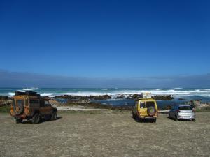 IMG 1811 - Kanarie bij Cape Agulhas