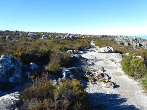 IMG 1373 - Tafelberg