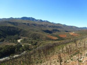 IMG 1888 - Prince Alfred Pass