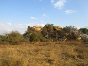 IMG 2417 - Kopje Kruger NP