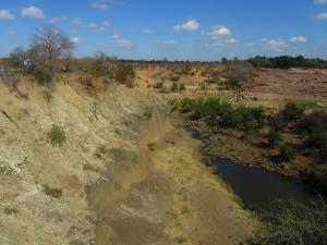 IMG 2549 - Kruger NP