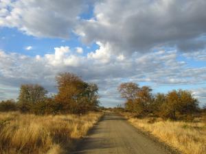 IMG 2641 - Kruger NP