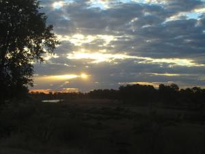 IMG 2649 - Kruger NP