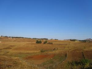 IMG 2900 - Onderweg naar Malolotja NR