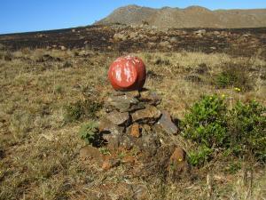 IMG 2925 - Wandelpadmarkering Malolotja NR