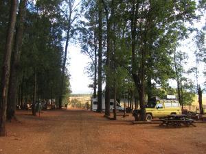 IMG 3043 - Kampje in Mililwane NR