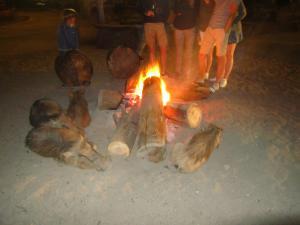IMG 3056 - Wrattenzwijnen bij kampvuur Mlilwane NR