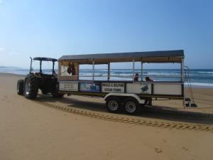 IMG 3326 - Transport naar walvistocht
