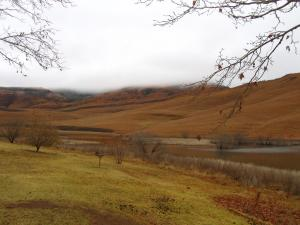 IMG 3570 - Kampje bij Mount Currie Nature Reserve