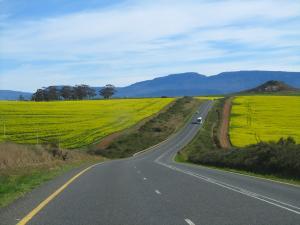 IMG 3614 - Onderweg naar Kaapstad
