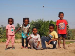 PA224197 - Aswan, Egypte